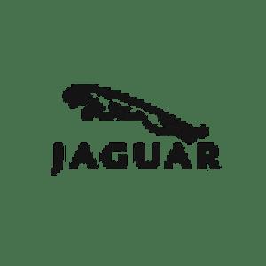 jaguar auto verkopen