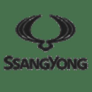 ssangyong auto verkopen